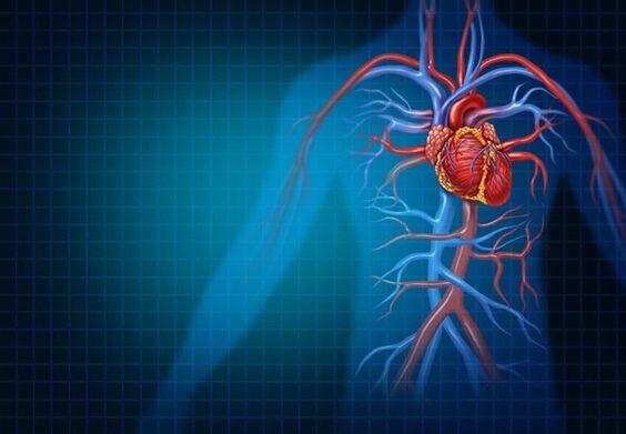 tornatermi edzés magas vérnyomás ellen mi a határ menti magas vérnyomás