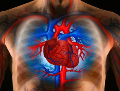 magas vérnyomás a régi időkben magas vérnyomás és a szív iszkémiája