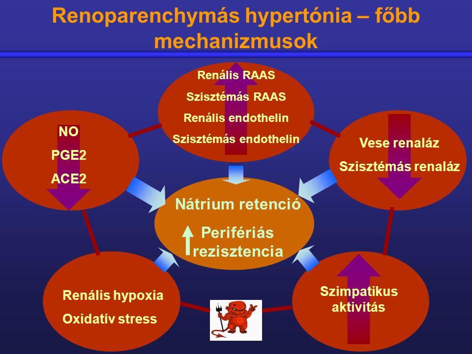 mit kell bevenni a vese hipertónia esetén magas vérnyomás felnőttek kezelésében