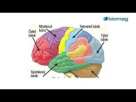 magas vérnyomás és agyi ödéma