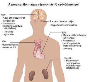magas vérnyomás bradycardiával magas vérnyomás és 2-es típusú cukorbetegség elleni gyógyszerek