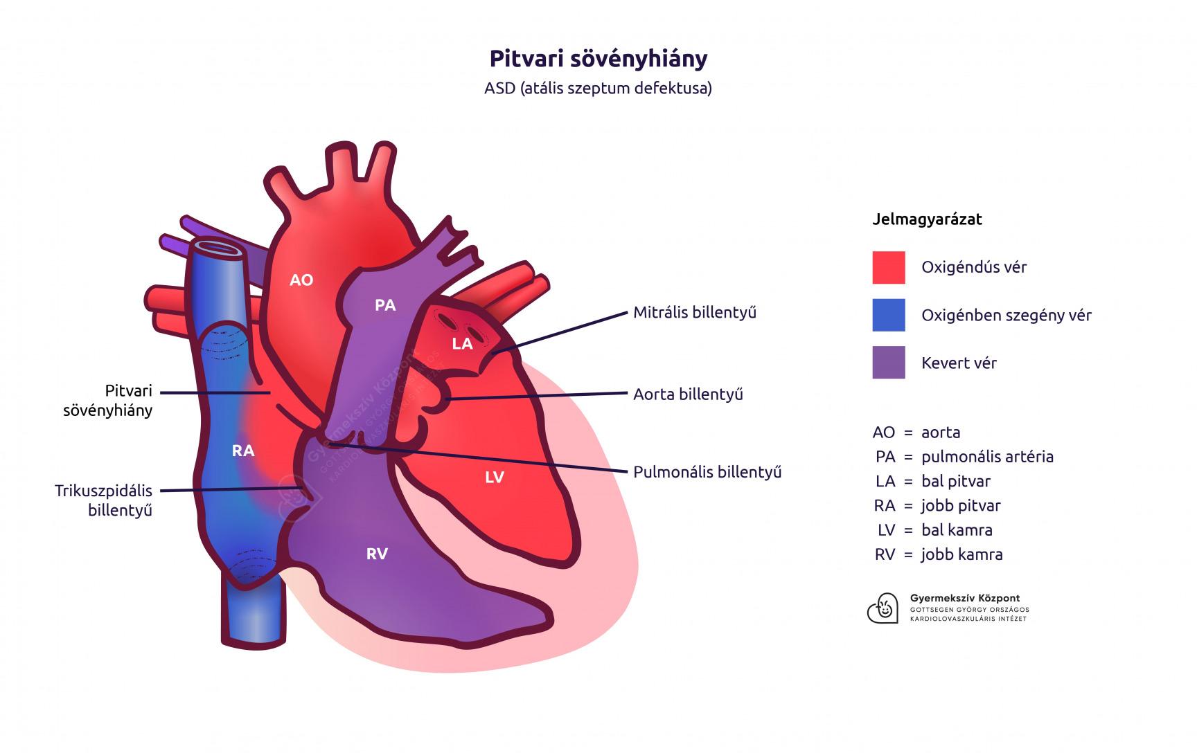 tribesztán magas vérnyomás szív hipertónia milyen nyomás