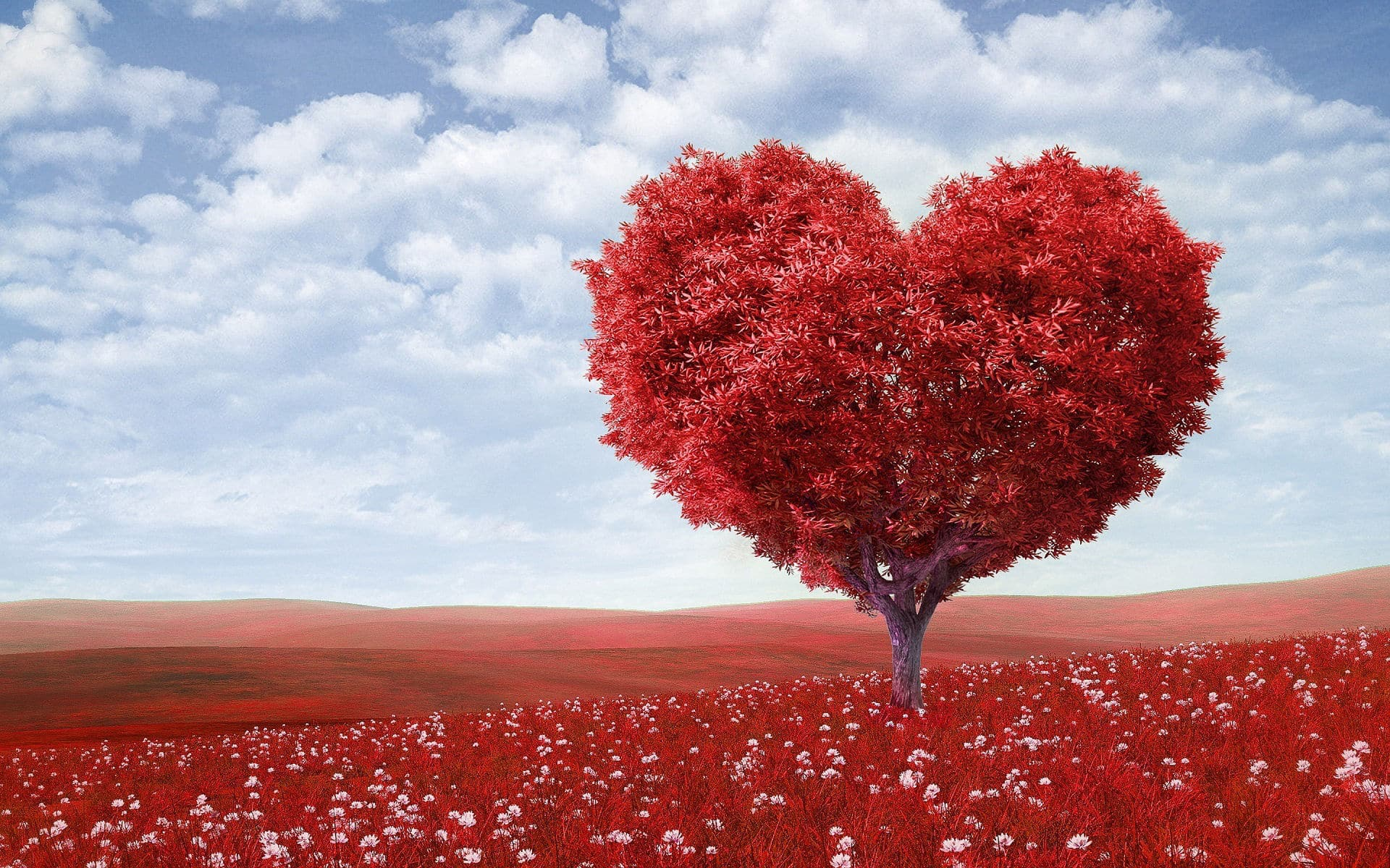 magas vérnyomás és a szív mormogása mi a magas vérnyomás kezelése