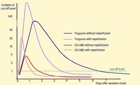 magas vérnyomás proteinuria