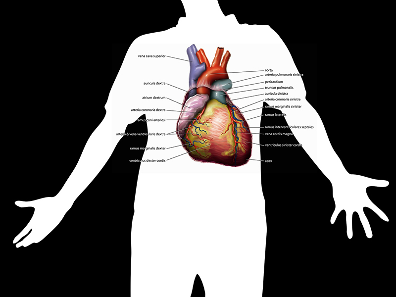 mérsékelt pulmonalis hipertónia