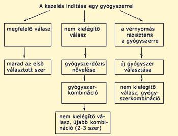 Általános alapelvek a hypertonia gyógyszeres kezelésében -