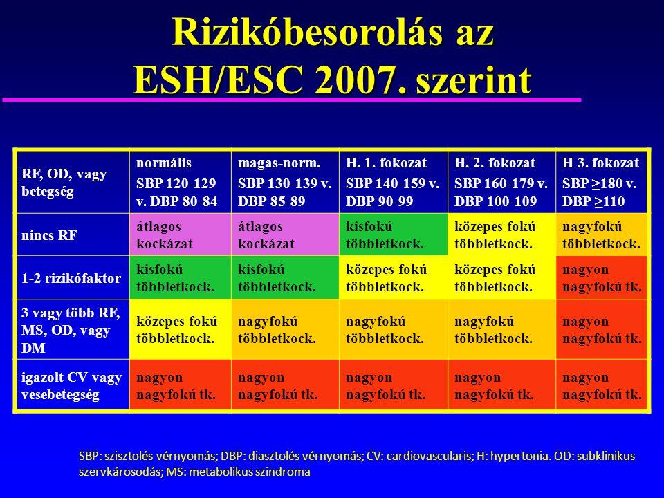 magas vérnyomás 3 fokozat 3 fokozatú kockázat 4
